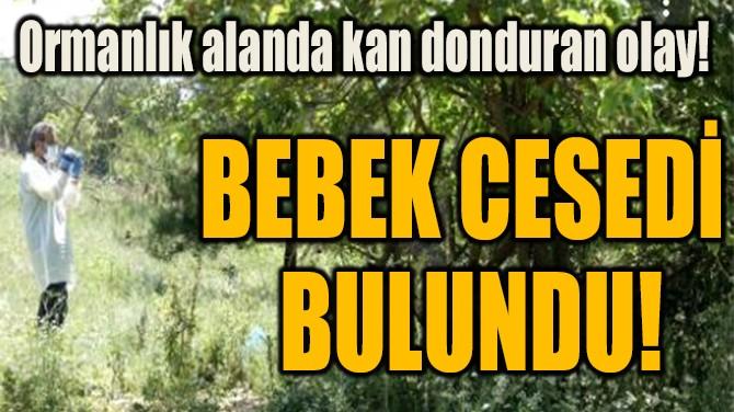BEBEK CESEDİ BULUNDU!