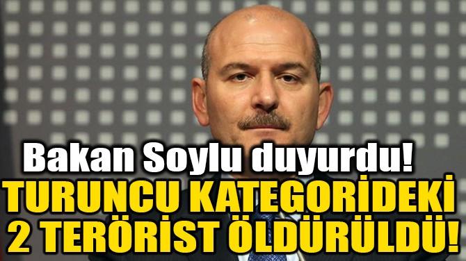 TURUNCU KATEGORİDEKİ 2 TERÖRİST ÖLDÜRÜLDÜ!