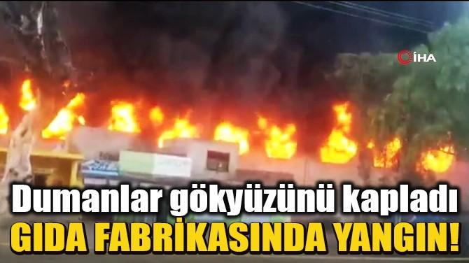 PAKİSTAN'DA GIDA FABRİKASINDA YANGIN!