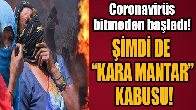 """ŞİMDİ DE """"KARA MANTAR""""  KABUSU!"""