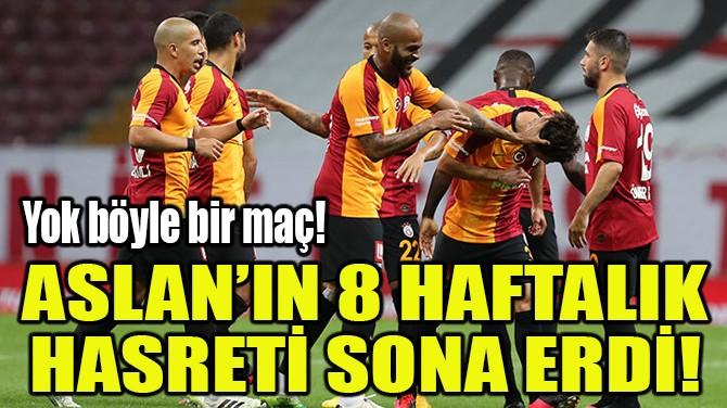 ASLAN'IN 8 HAFTALIK HASRETİ SONA ERDİ!