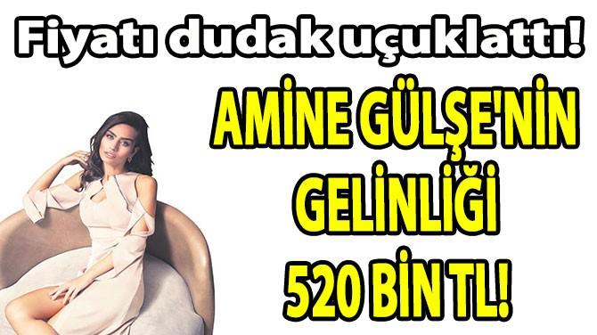 AMİNE GÜLŞE'NİN GELİNLİĞİ  520 BİN TL!