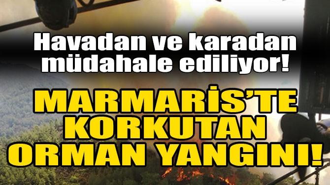 MARMARİS'TE KORKUTAN ORMAN YANGINI!