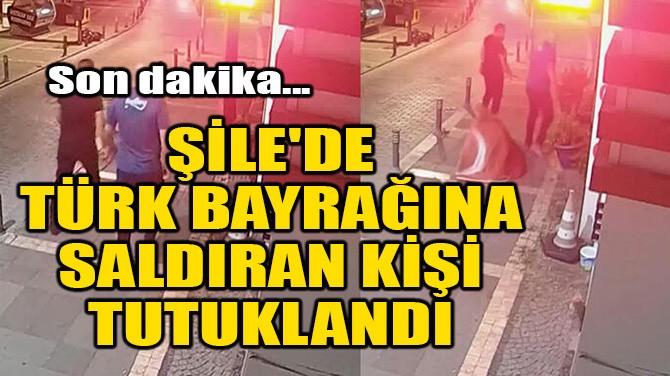 ŞİLE'DE TÜRK BAYRAĞINA SALDIRAN KİŞİ TUTUKLANDI
