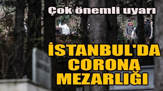 İSTANBUL'DA CORONA MEZARLIĞI!