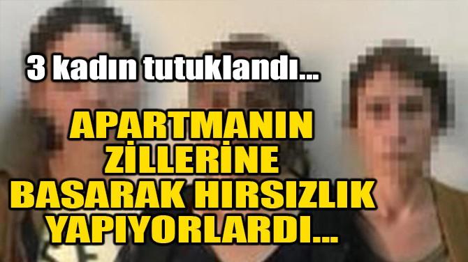 APARTMANIN ZİLLERİNE BASARAK HIRSIZLIK YAPIYORLARDI...