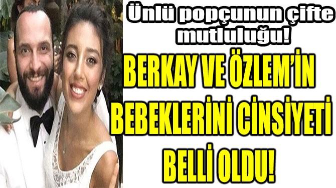 BERKAY VE ÖZLEM'İN  BEBEKLERİNİ CİNSİYETİ BELLİ OLDU!