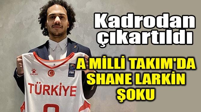 A MİLLİ TAKIM'DA SHANE LARKİN ŞOKU
