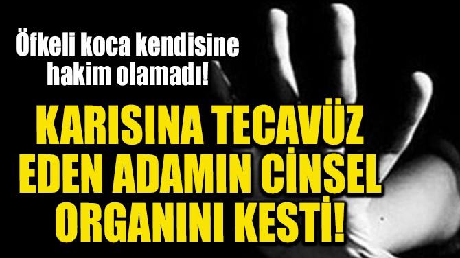 KARISINA TECAVÜZ EDEN ADAMIN CİNSEL ORGANINI KESTİ!