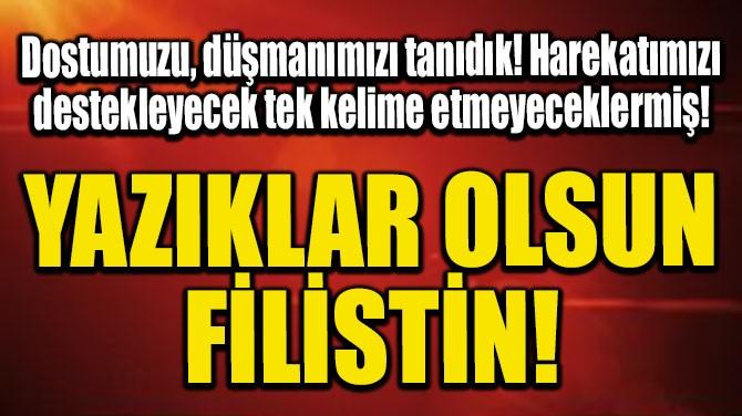 YAZIKLAR OLSUN FİLİSTİN!