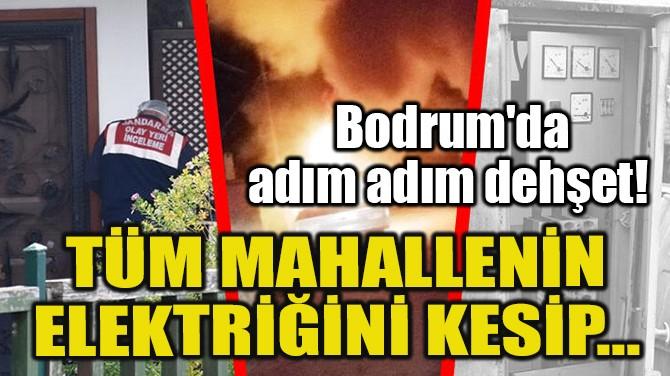 TÜM MAHALLENİN ELEKTRİĞİNİ KESİP...