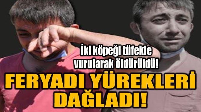 FERYADI YÜREKLERİ DAĞLADI!