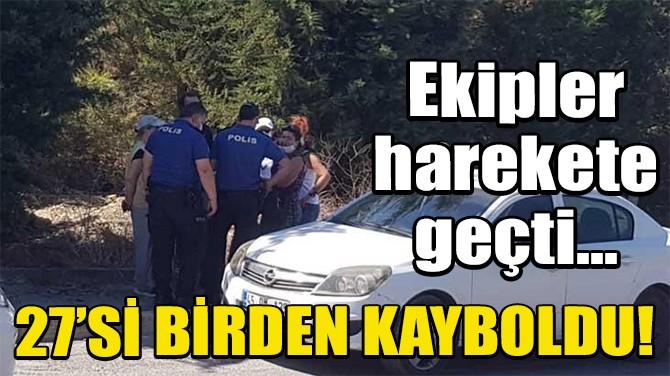 İSTANBUL'DA 27 KÖPEK ORTADAN KAYBOLDU!