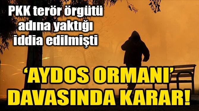 AYDOS ORMANI'NDAKİ YANGIN DAVASINDA KARAR!