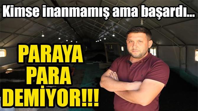 PARAYA PARA DEMİYOR!!!