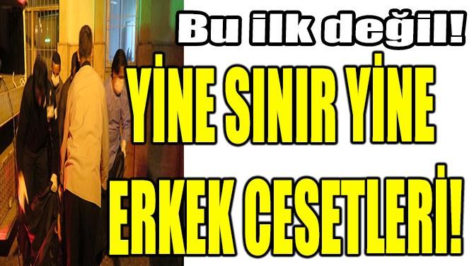 YİNE SINIR YİNE  ERKEK CESETLERİ!