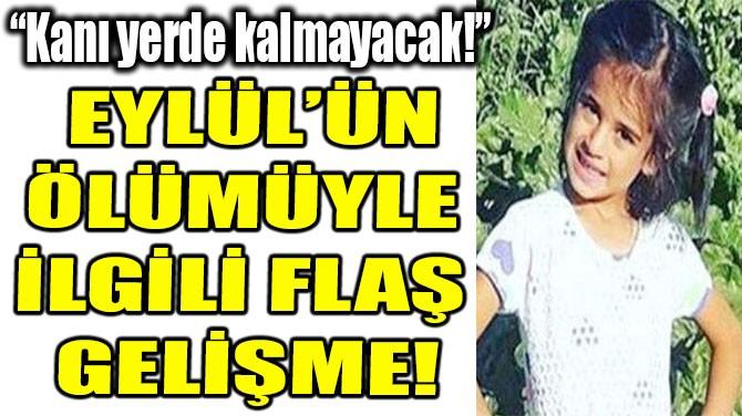 EYLÜL'ÜN ÖLÜMÜYLE  İLGİLİ FLAŞ GELİŞME!