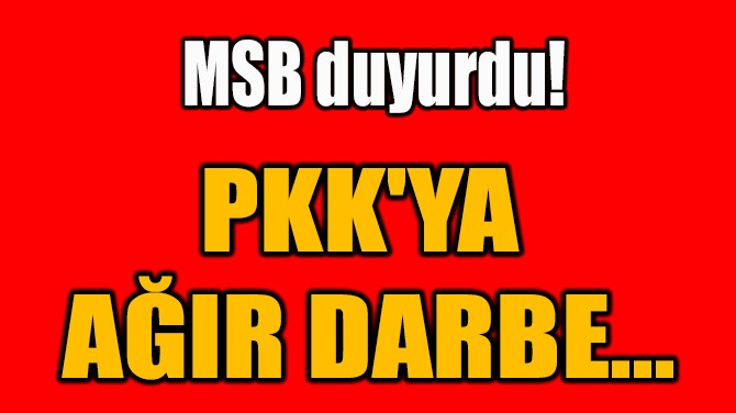 PKK'YA  AĞIR DARBE...
