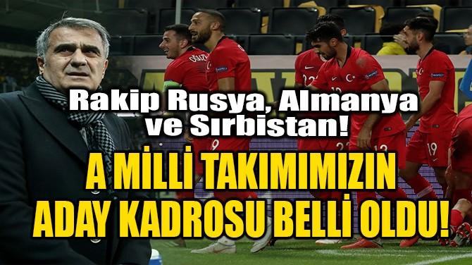 A MİLLİ TAKIM ADAY KADROSU AÇIKLANDI!