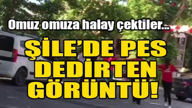 ŞİLE'DE PES DEDİRTEN GÖRÜNTÜ!