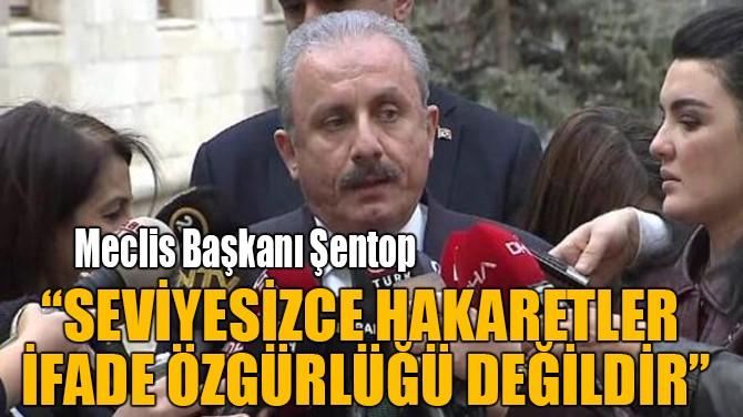"""""""SEVİYESİZCE HAKARETLER  İFADE ÖZGÜRLÜĞÜ DEĞİLDİR"""""""