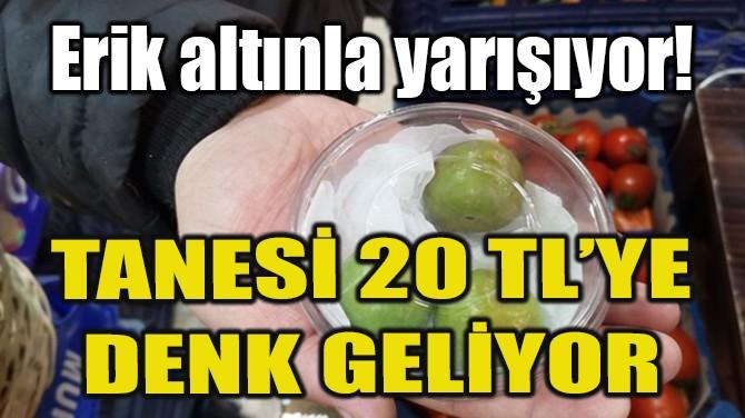 TANESİ 20 TL'YE DENK GELİYOR