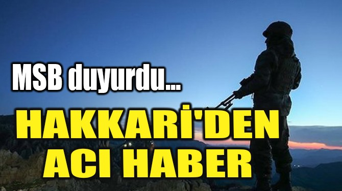 MSB DUYURDU! HAKKARİ'DEN ACI HABER!