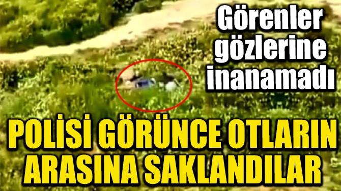 POLİSİ GÖRÜNCE OTLARIN ARASINA SAKLANDILAR