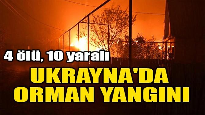 UKRAYNA'DA  ORMAN YANGINI