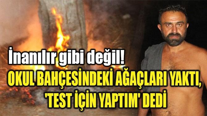 OKUL BAHÇESİNDEKİ AĞAÇLARI YAKTI,  'TEST İÇİN YAPTIM' DEDİ