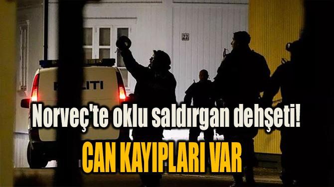 NORVEÇ'TE OKLU SALDIRGAN DEHŞETİ! CAN KAYIPLARI VAR