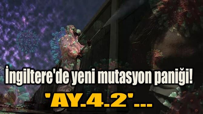 İNGİLTERE'DE YENİ MUTASYON PANİĞİ! 'AY.4.2'