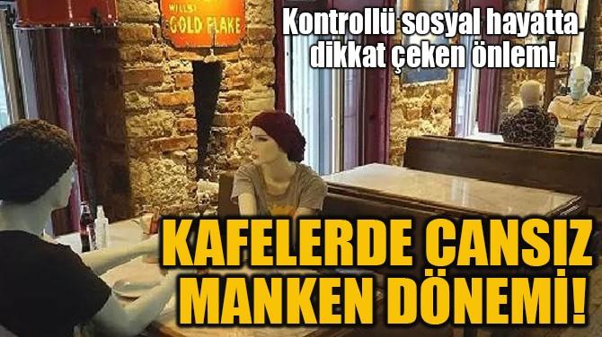 KAFELERDE CANSIZ  MANKEN DÖNEMİ!