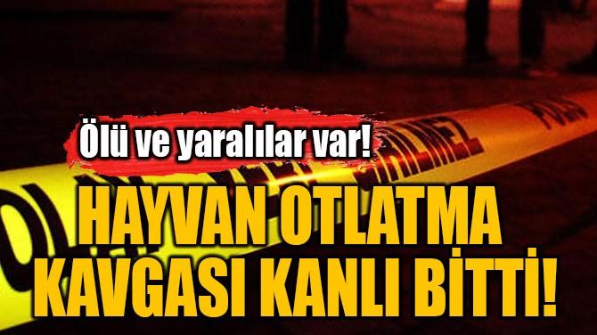 HAYVAN OTLATMA  KAVGASI KANLI BİTTİ!