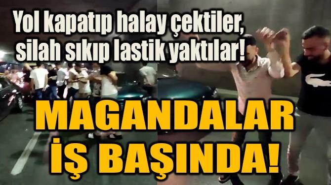 MAGANDALAR İŞ BAŞINDA!