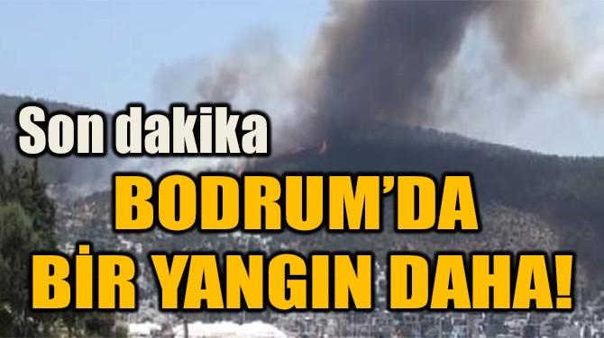 BODRUM'DA BİR YANGIN DAHA!