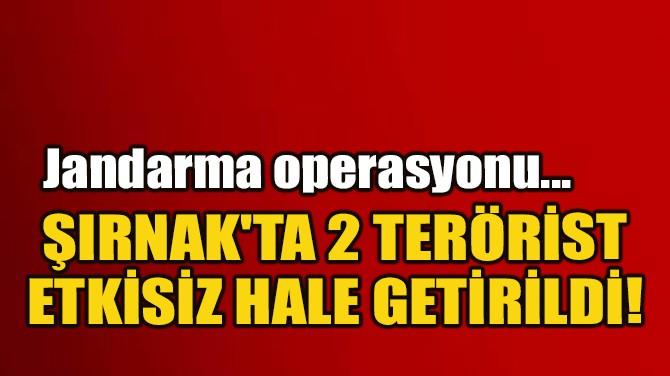 İÇİŞLERİ BAKANLIĞI: ŞIRNAK'TA 2 TERÖRİST ETKİSİZ HALE GETİRİLDİ
