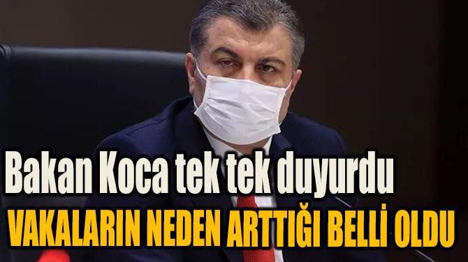 BAKAN KOCA TEK TEK DUYURDU VAKALARIN NEDEN ARTTIĞI BELLİ OLDU...