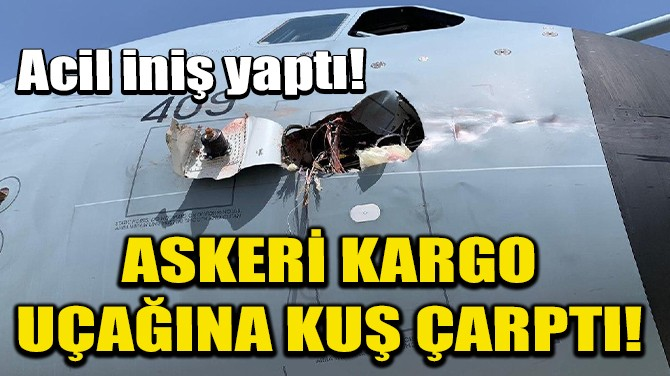 İSPANYA'DA ASKERİ KARGO UÇAĞINA KUŞ ÇARPTI!