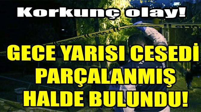 GECE YARISI CESEDİ PARÇALANMIŞ HALDE BULUNDU!