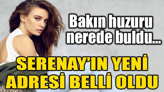 SERENAY SARIKAYA'NIN YENİ ADRESİ BELLİ OLDU!