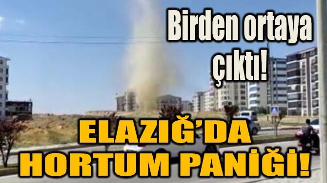 ELAZIĞ'DA HORTUM PANİĞİ!