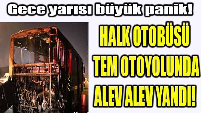 HALK OTOBÜSÜ TEM OTOYOLUNDA ALEV ALEV YANDI!