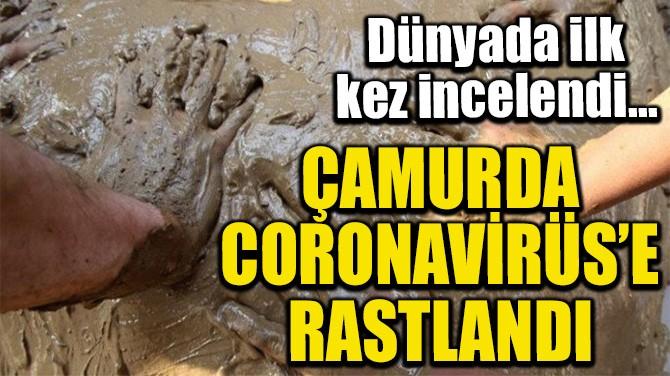 ÇAMURDA CORONAVİRÜS'E RASTLANDI
