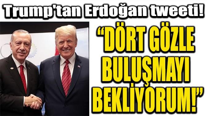 """TRUMP'TAN  ERDOĞAN TWEETİ!  """"DÖRT GÖZLE  BULUŞMAYI  BEKLİYORUM!"""""""