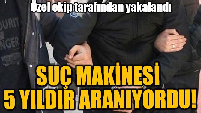 SUÇ MAKİNESİ 5 YILDIR ARANIYORDU!