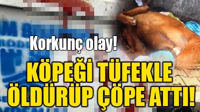KÖPEĞİ TÜFEKLE  ÖLDÜRÜP ÇÖPE ATTI!