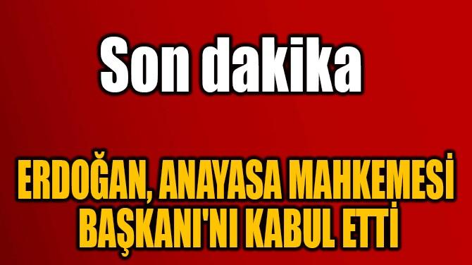 ERDOĞAN, ANAYASA MAHKEMESİ  BAŞKANI'NI KABUL ETTİ