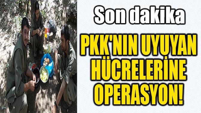 PKK'NIN UYUYAN  HÜCRELERİNE  OPERASYON!