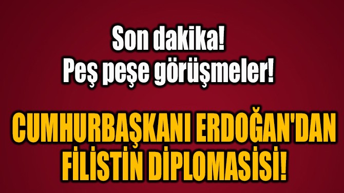 CUMHURBAŞKANI ERDOĞAN'DAN  FİLİSTİN DİPLOMASİSİ!